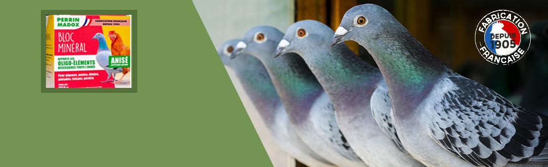 Produits alimentaires pour Pigeons, poules, dindes, pintades, faisans, perdrix.